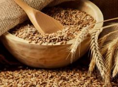 Тендер на поставку 50 000 тонн пшеницы